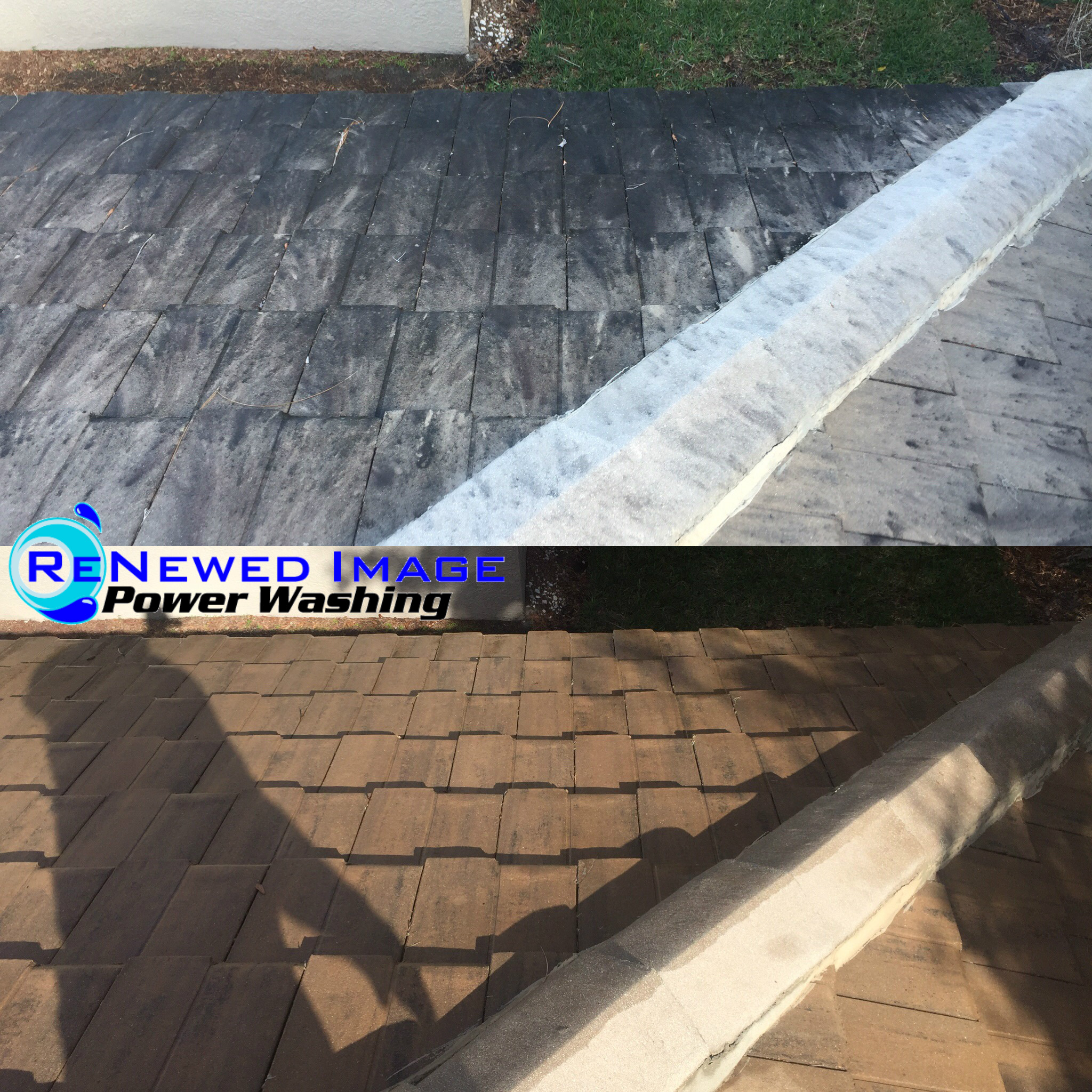 wesley chapel roof cleaning