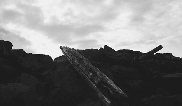k_driftwood.jpg