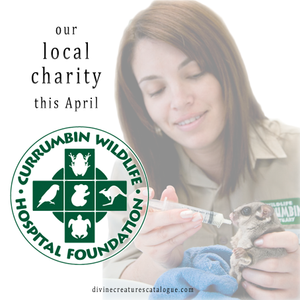 our local charity is Currumbin Wildlife Hospital