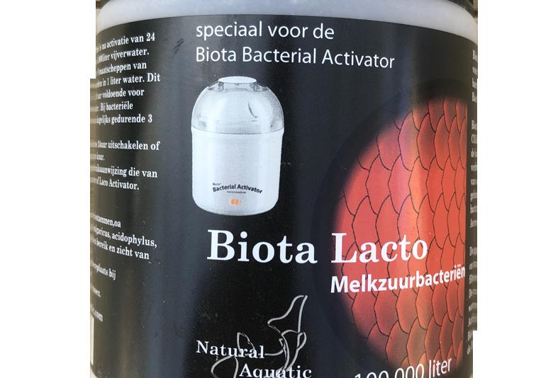 Biota Lacto Bacillis