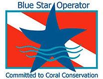 bluestar-logo.jpg