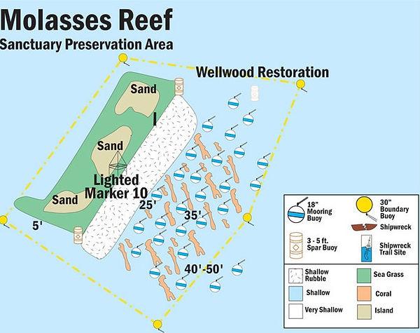 NOAA site map of Molasses Reef
