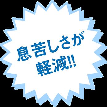 ikigurusisa.png