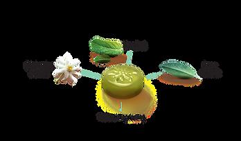 Swissherbs ingredients_Mint & Sage 1200x700.png