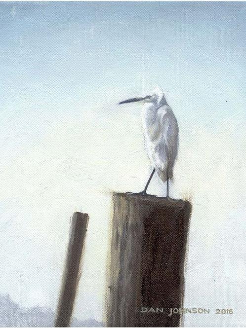 Egret Watch