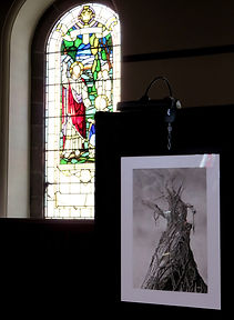 A charcoal illustration of a tree on a black, cloth background in front of a stained glass window.