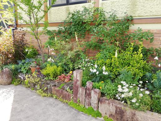6月のJIHEEの庭