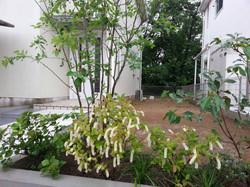色々な種類の植栽が玄関周りを彩ります。