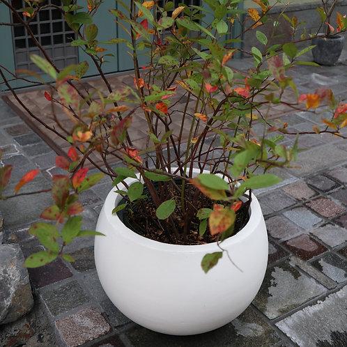 ファイバーセメント製植木鉢 orb(M)