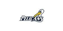 Logo Collection Vol 1 - Pelicans
