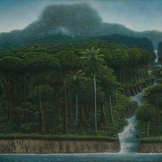 """""""Atravesando la Selva"""""""