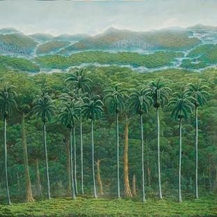 """Selva de Noviembre"""