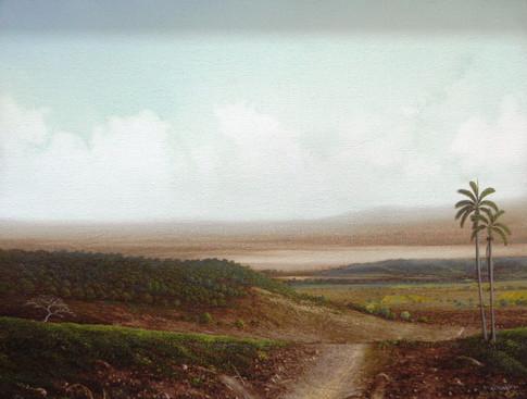 """""""Camino con Palma"""""""