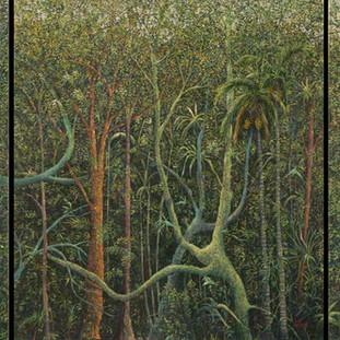 """Panamá Selva # 4, 5, 6"""