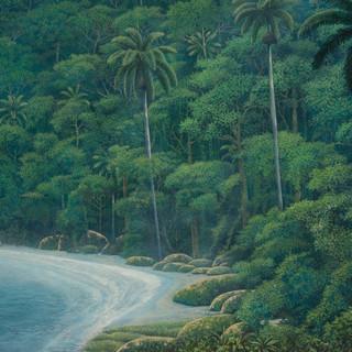 """La Playa en la Selva"""