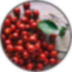 hawthorn-berry.jpg