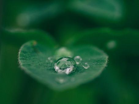 3 Ways to... Practice Mindfulness