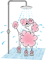 poodle with shower.PNG