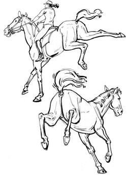 Horse 2 Jumpers FRT & BCK