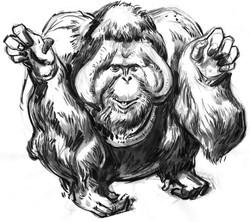 Ape Orang Big HEAD FRT
