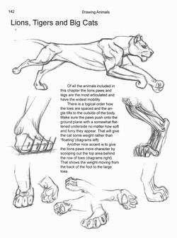Feet & Legs Chapter 7
