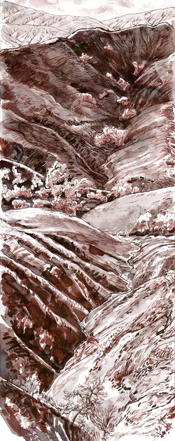 Chino Hills Bane Canyon Burn