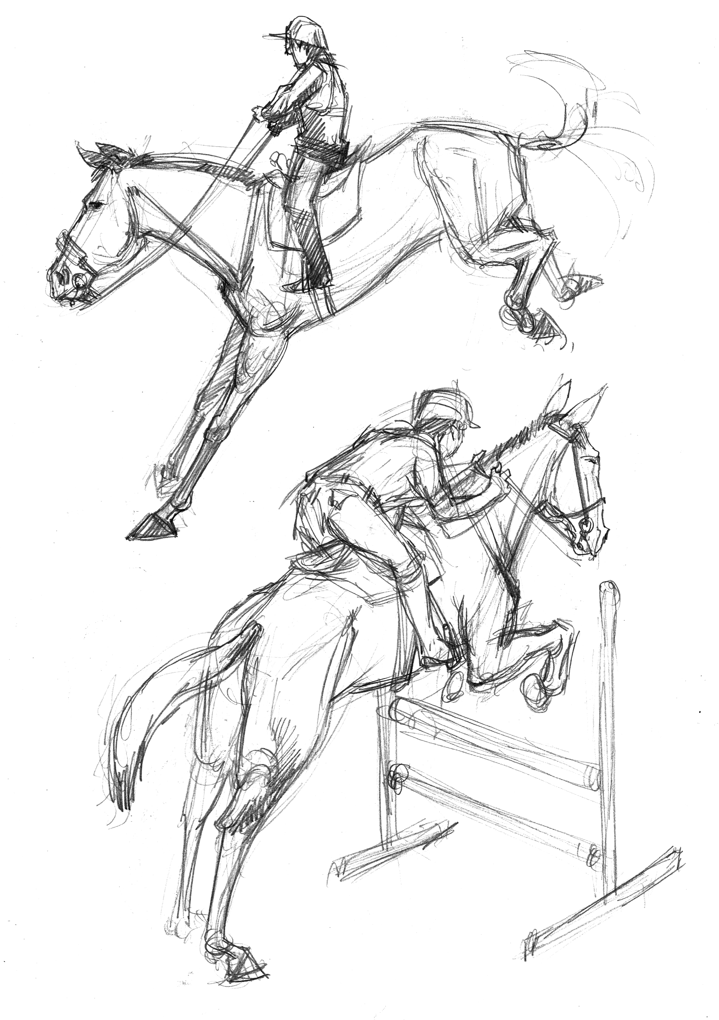 Horse 2 jumpers Sketches