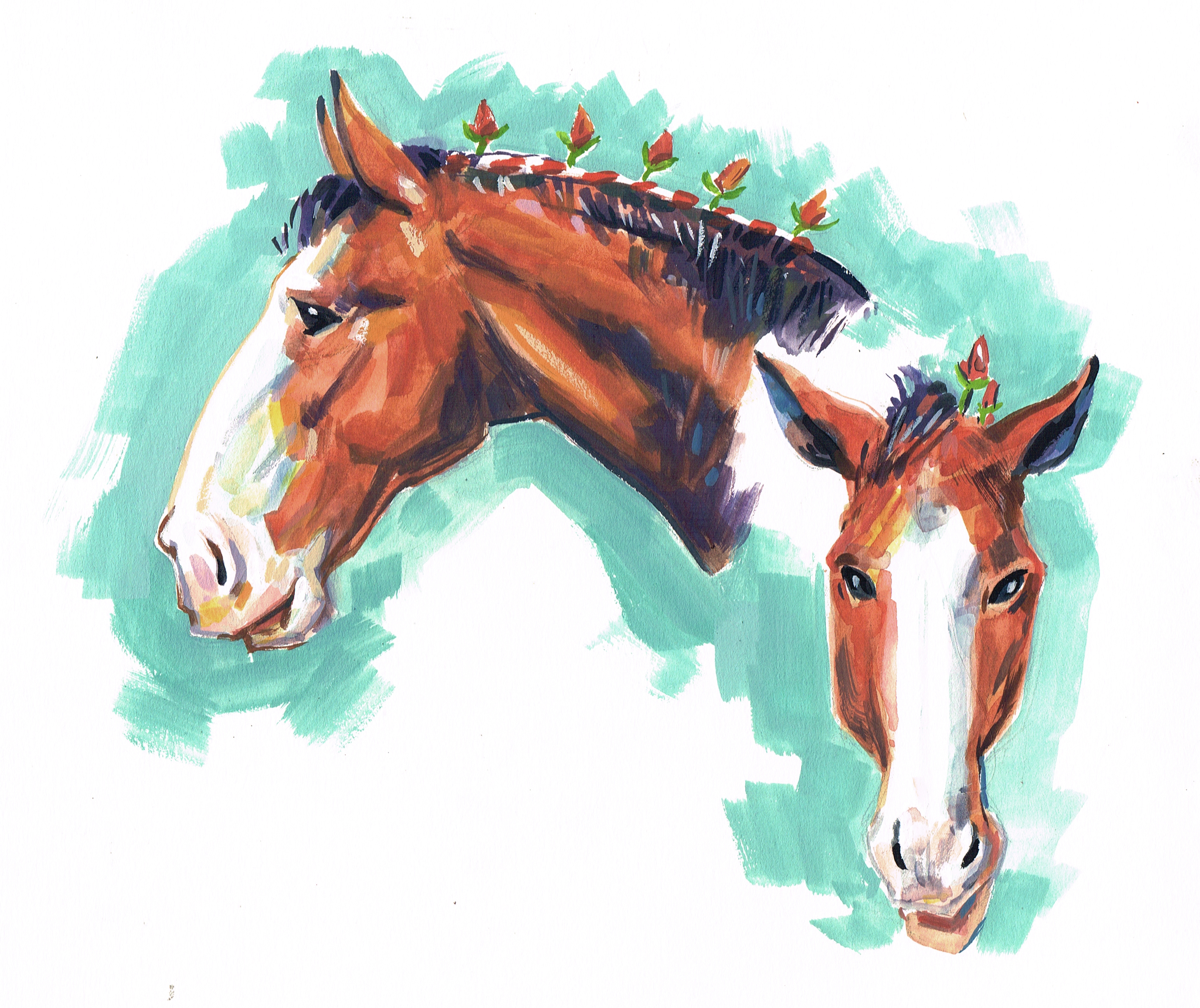 Horse Clydesdale 2 Heads color