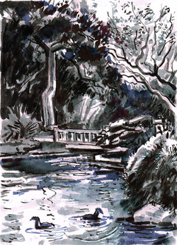 Koi Pond & bridge