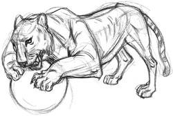 CAT Tiger Ball Grab FRT 2
