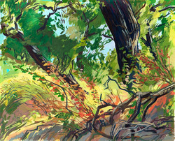 Sherwood Brush Oak & Ivy
