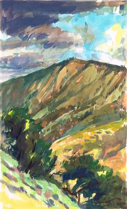 Padua stormy ridge & trees