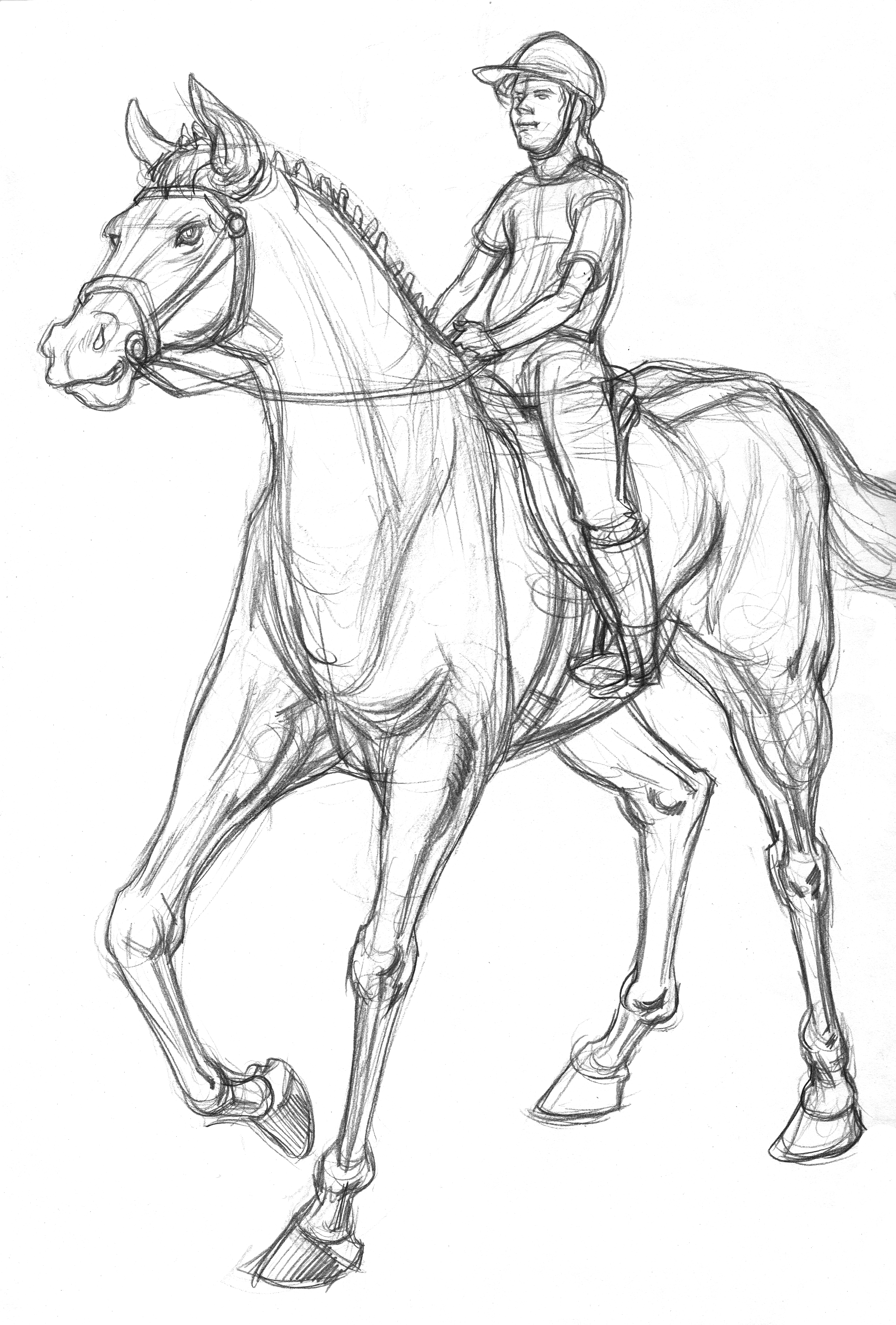 Horse Tall & Rider