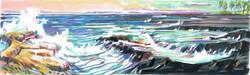 Royal NP Lava Reefs & Surf