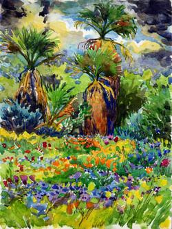 Palms Wildflowers & Storm