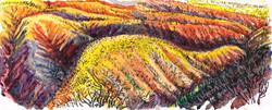 Claremont - Bright Sun & Fire Hills