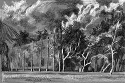 Golf Fence & Trees