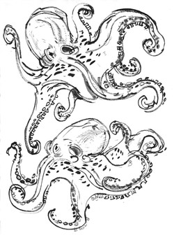 Octopuses swirling