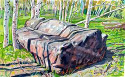 Utah meadow & box boulder