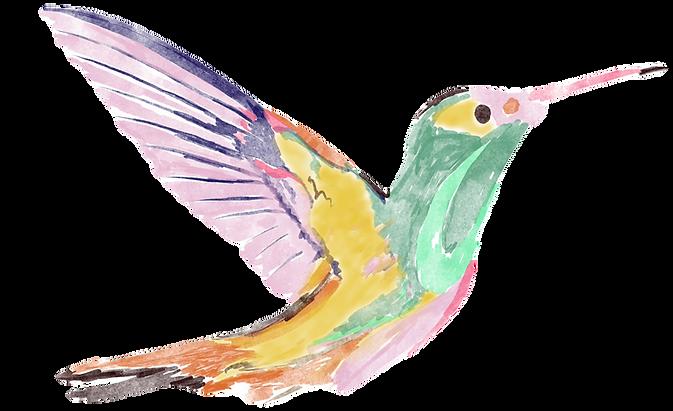 hummingbirdmotif_edited_edited.png
