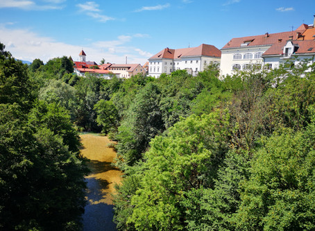 SPOTLIGHT ON KRANJ