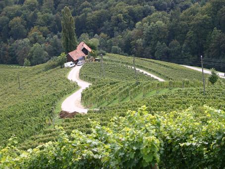An Englishwoman's Slovenian Adventure