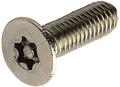 Torx Tamper-resistent Screw