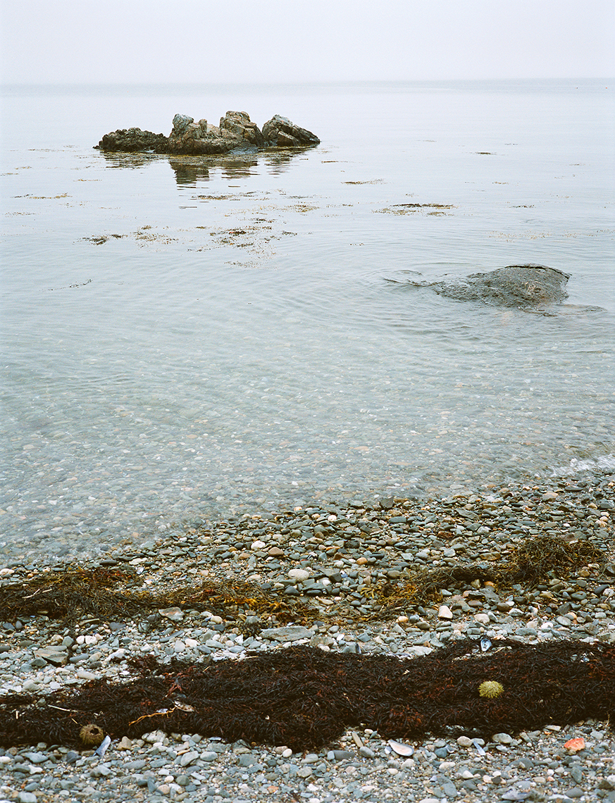 Great Spruce Head Island, ME, 2003
