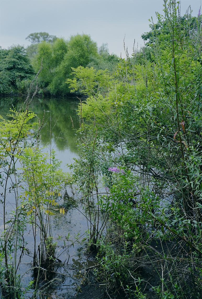 Bridgehampton, NY, 2003