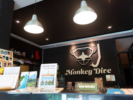 SURF & STAY : MONKEY DIVE HOSTEL KHAOLAK