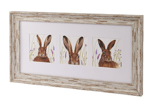 Framed hares picture
