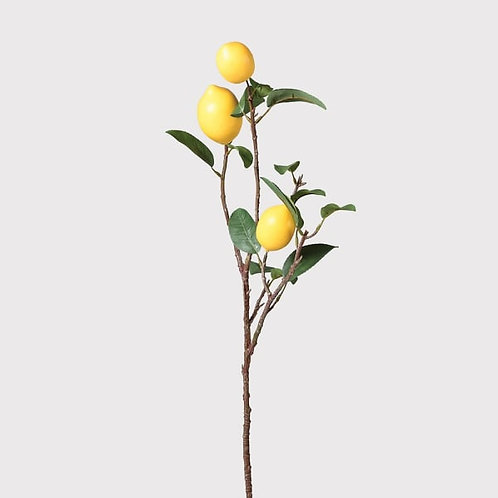 Lemon Spray with Leaves