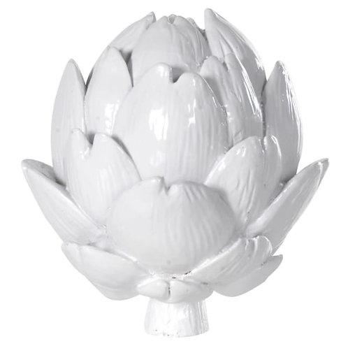 White artichoke