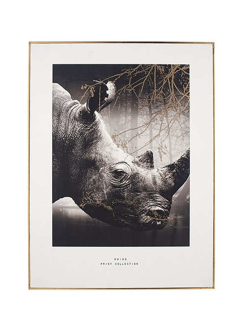 Pacific mono Rhino print with black frame